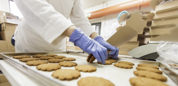 Food service workers face a variety of hazards, so no glove provides universal protection.