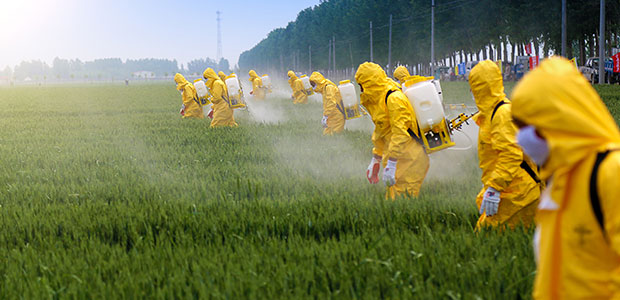 """Take Home"" Contaminants: How Workplace Toxins Don't Stay at Work"
