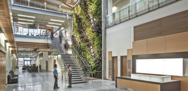 The Ed Lumley Centre for Engineering Innovation at the University of Windsor campus has a bio wall that includes 1,500 plants. It naturally filters the carbon dioxide in the air and then transfers its freshness to the entire building. This building also boasts glass and solar systems, a green roof that collects and filters rain water, and hollow core slabs to both harness and store energy and in turn decrease the use of traditional HVAC systems. (Termobuild photo)