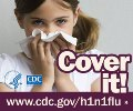 This image is displayed on a page from the health care system offering H1N1 information for patients and families.
