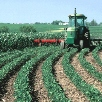 ASSE offers tips to prevent farming injuries.
