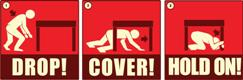 ShakeOut participants are asked to Drop, Cover, and Hold On as if a major earthquake were occurring.