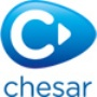 Chesar helps registrants complete Chemical Safety Assessments for the different uses of a substance as they prepare Chemical Safety Reports.