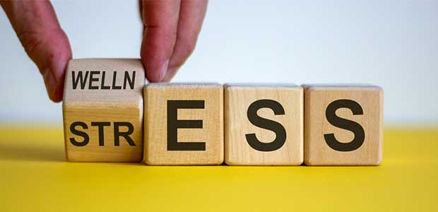 The Importance of Addressing Workplace Stress