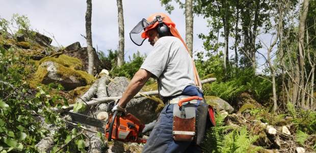 The U.S. Forest Service plans to develop a National Sawyer Database to be used to track national sawyer certifications for those who have met the training and evaluation requirements in the use of the saws. Certifications will be recognized across the National Forest System.