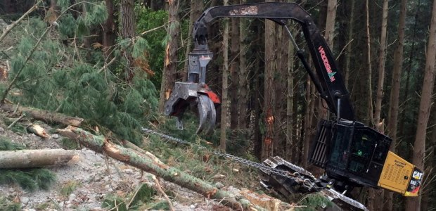 Tethered logging operations must be planned by the operator and the competent person on how to safely operate on slopes more than 50 percent, taking into consideration the experience of the operator; limitations of the machine and soil conditions; direction of travel; requirements for turning the machine on slopes; weather; load sizes; method and adequacy of anchorage; and any other adverse conditions.