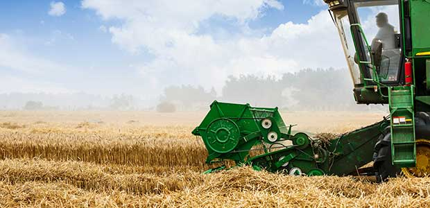 Electrical Safety Reminder Issued for Harvest Season