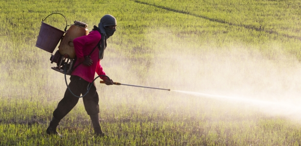 The Hidden Dangers Of Chemical Fertilizers Occupational Health