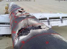 NTSB wasn't able to determine whether lithium batteries aboard this UPS cargo aircraft caused the fire that destroyed the plane in February 2006 after it landed safely in Philadelphia, but it concluded they could pose a fire hazard. (NTSB photo)