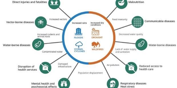 Who Warns Of El Nios Public Health Impacts Occupational Health